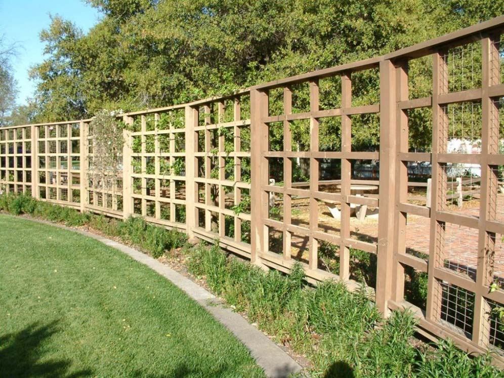 Brown Open Fencing